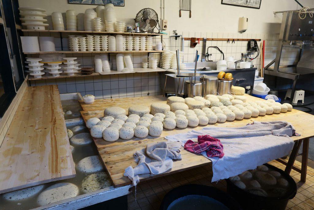 Führung durch die Käserei