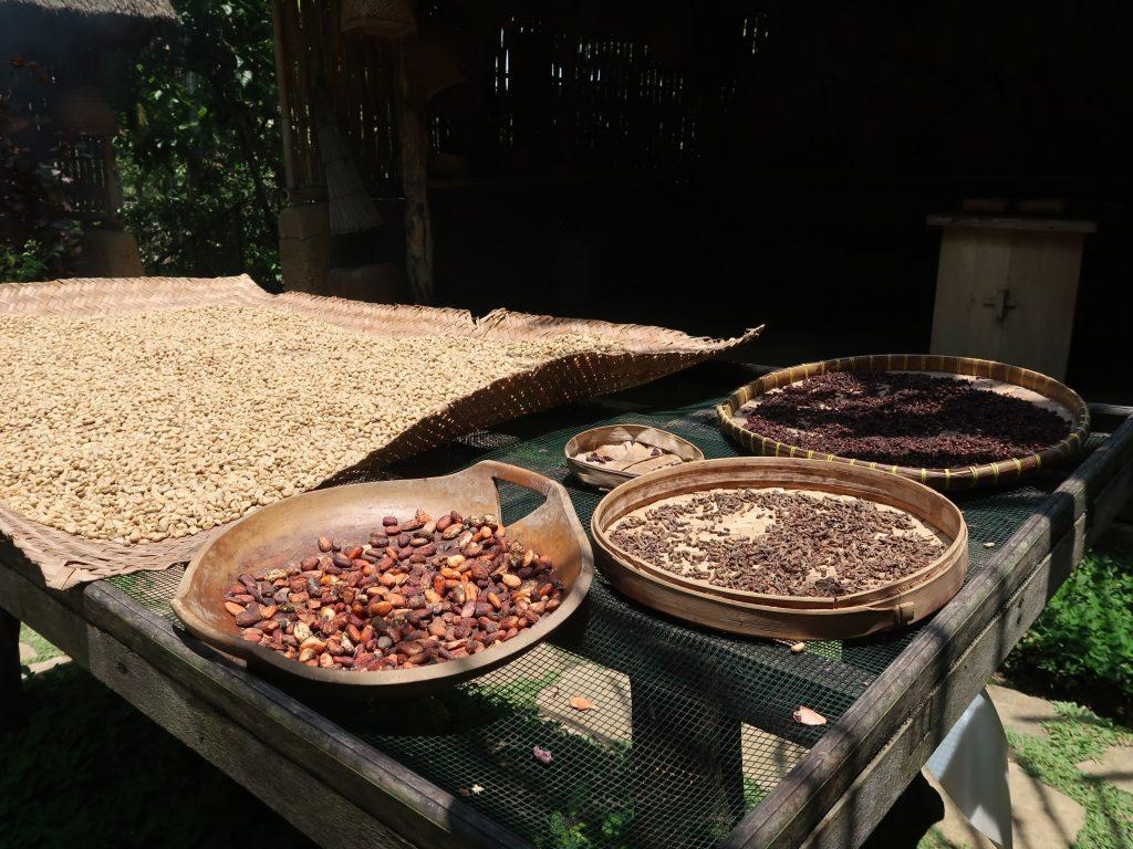 Herstellung von Luwak Kaffee